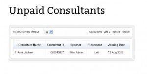 Unpaid Consultants