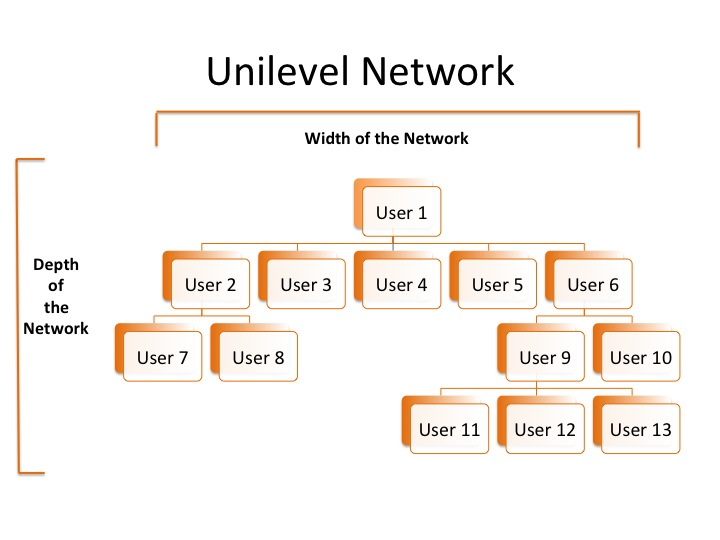 Unilevel Network Infographic